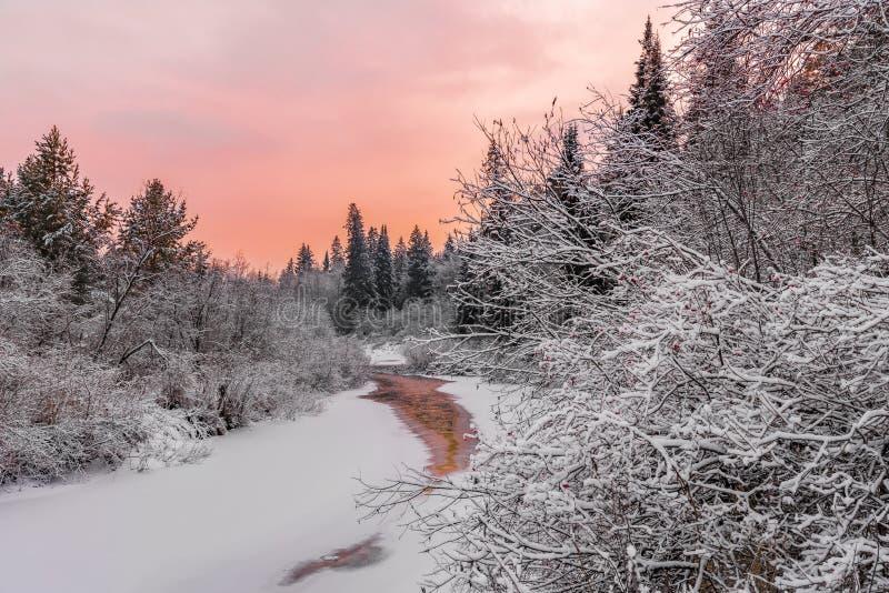 's Avonds lucht boven een bevroren bosrivier stock foto