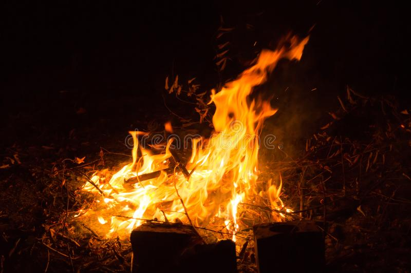 S Bonfire in the nature. Bright fire and flame tails. Bonfire in the nature. Bright fire and flame tails. Red fire. The warmth of a night fire royalty free stock images