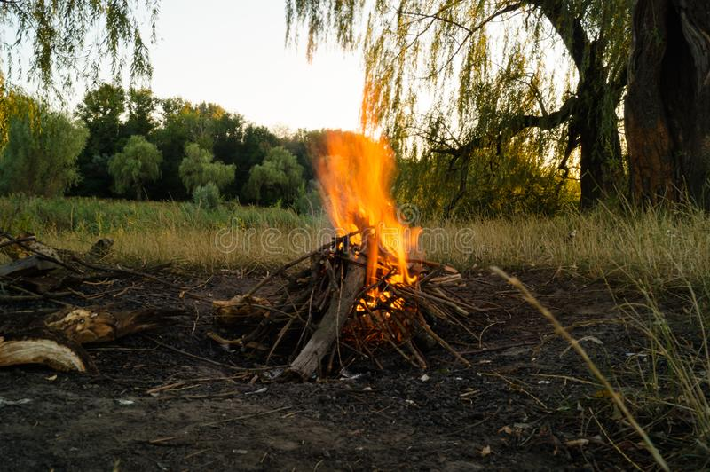 S Bonfire in the nature. Bright fire and flame tails. Bonfire in the nature. Bright fire and flame tails. Red fire. The warmth of a night fire stock photo