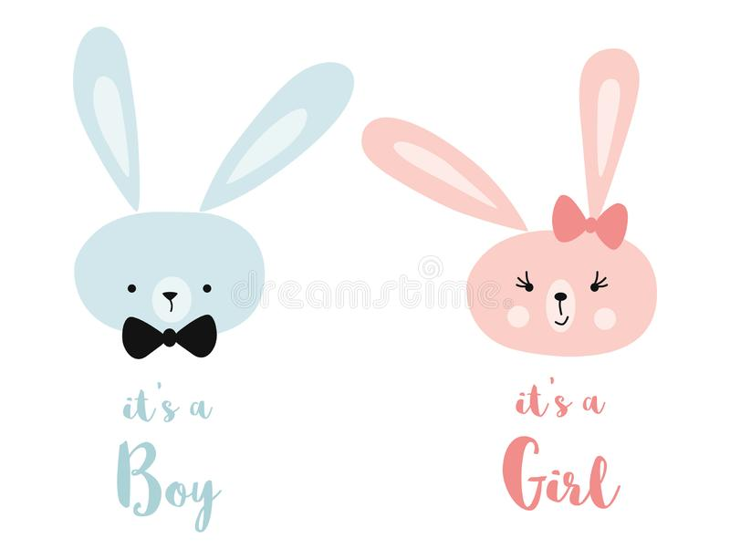 It`s a boy it`s a girl Vector greeting card. Baby shower card. Baby card design element Rabbit head stock illustration