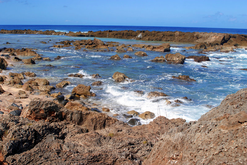 s creek Hawaii rekin obrazy stock