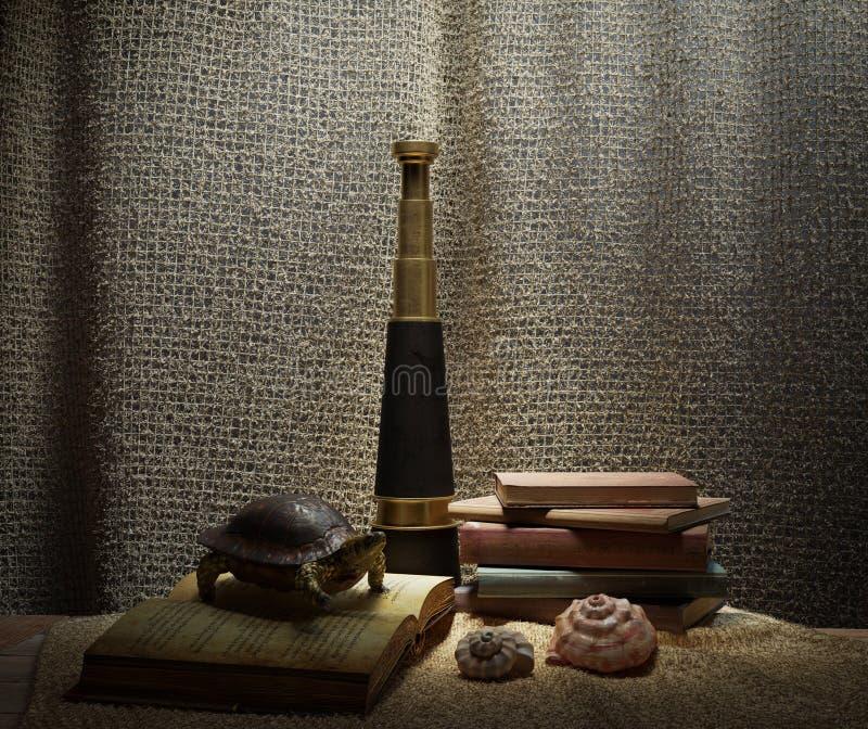 ` S de la concha marina en escena interior con la tortuga, los libros y la foto del concepto del telescopio imágenes de archivo libres de regalías