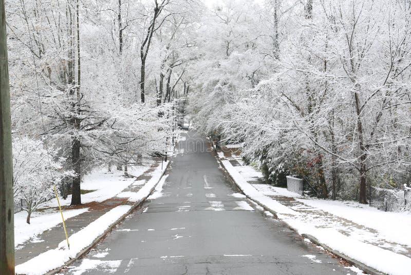 ` S di Georgia Tree coperto in neve immagini stock libere da diritti