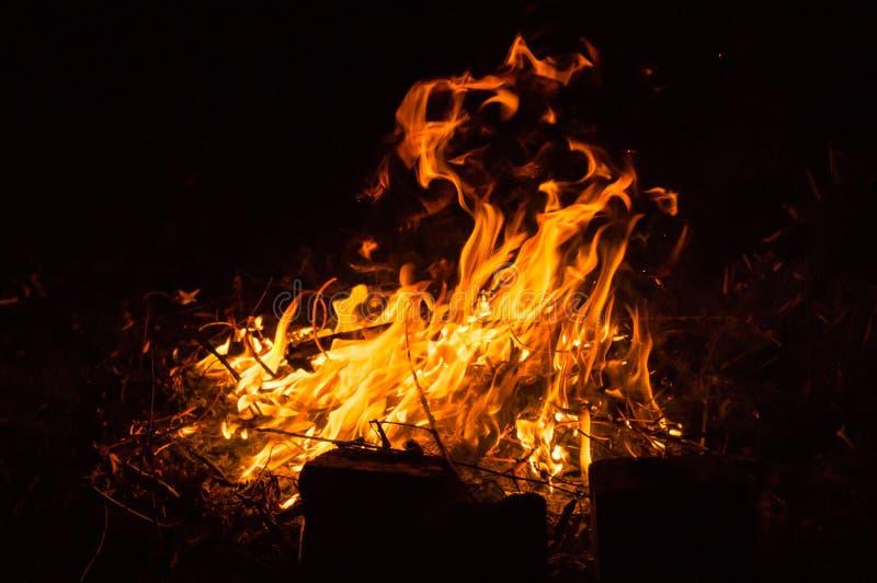 S-Feuer in der Natur Helle Feuer- und Flammenendstücke lizenzfreies stockbild