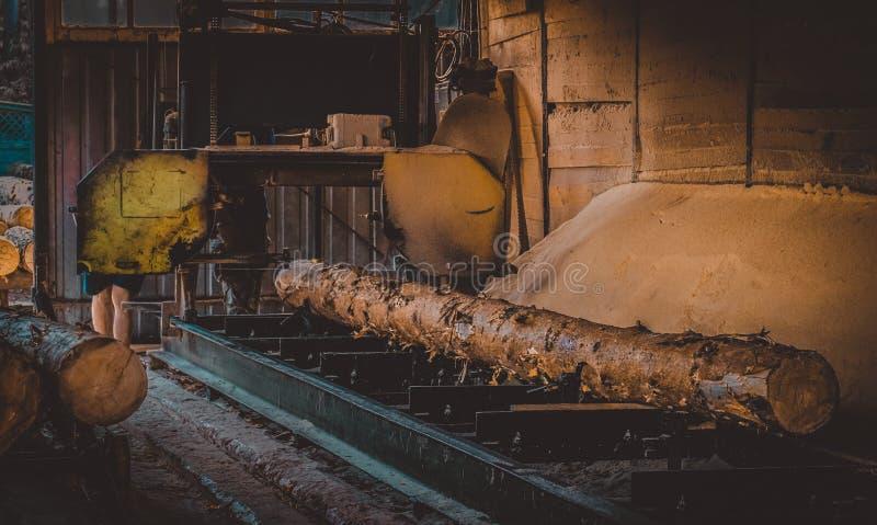 s?gem?hle Prozess der maschineller Bearbeitung meldet S?gem?hlenmaschinens?gen der Baumstamm an lizenzfreie stockfotos