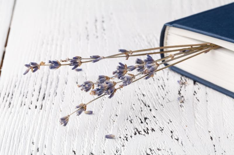 It`s good memories, a bouquet of dry lavender and grass and books royalty free stock photo