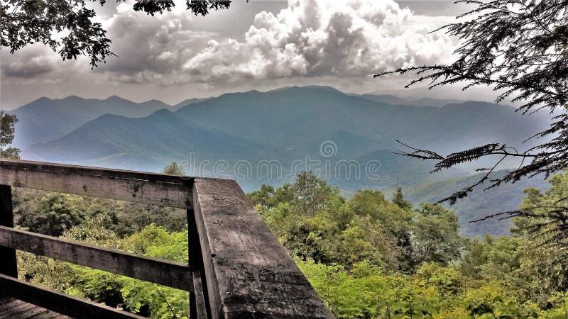 ` S Grayson Highlands State Park de Virgínia fotografia de stock royalty free