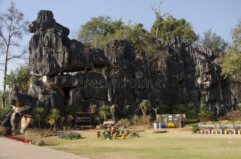 ` S Kunming Suan Hin Pha Ngam или Таиланда на заповеднике Phu Luang в Loei, Таиланде стоковые изображения