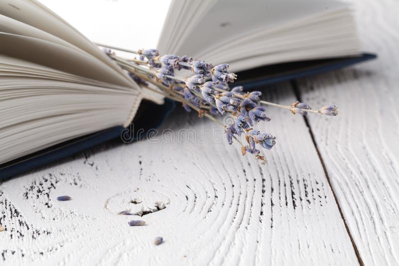 It`s memories, a bouquet of dry lavender and books stock photography