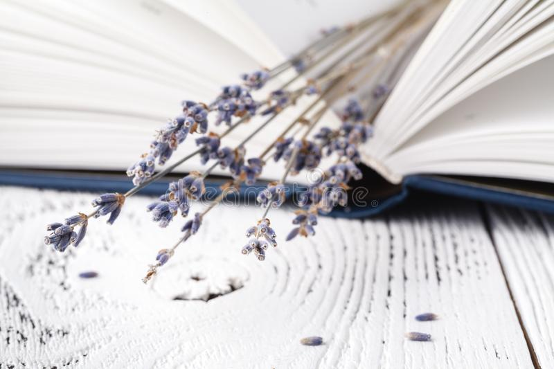 It`s memories, a bouquet of dry lavender and books stock images