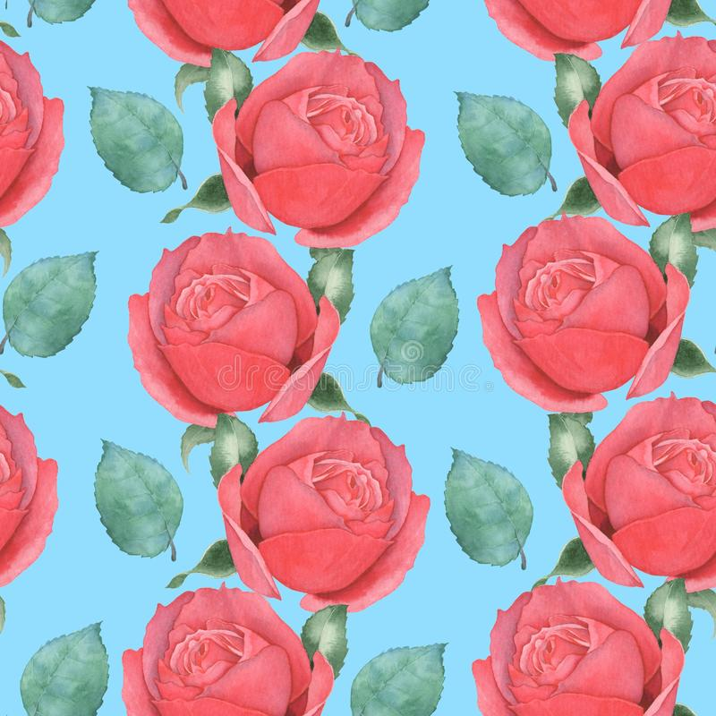 S?ml?s modell av r?da rosor f?r flygillustration f?r n?bb dekorativ bild dess paper stycksvalavattenf?rg hand-teckning 1 stock illustrationer