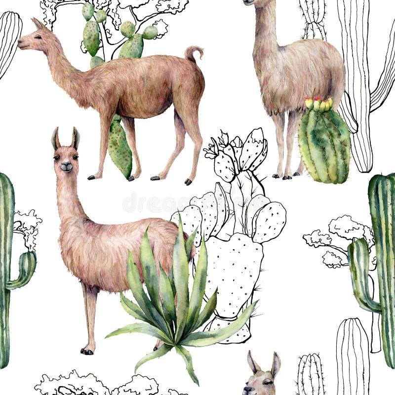S?ml?s modell f?r vattenf?rg med lama- och ?kenkakturs Handen målade den botaniska illustrationen med lamadjuret och växter royaltyfri illustrationer