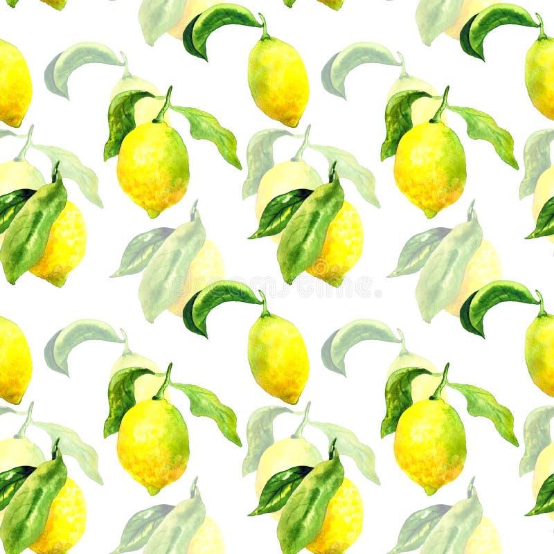 S?ml?s modell med citroner och sidor Hand dragen vattenf?rgillustration Textur f?r trycket, tyg, textil, tapet royaltyfri illustrationer