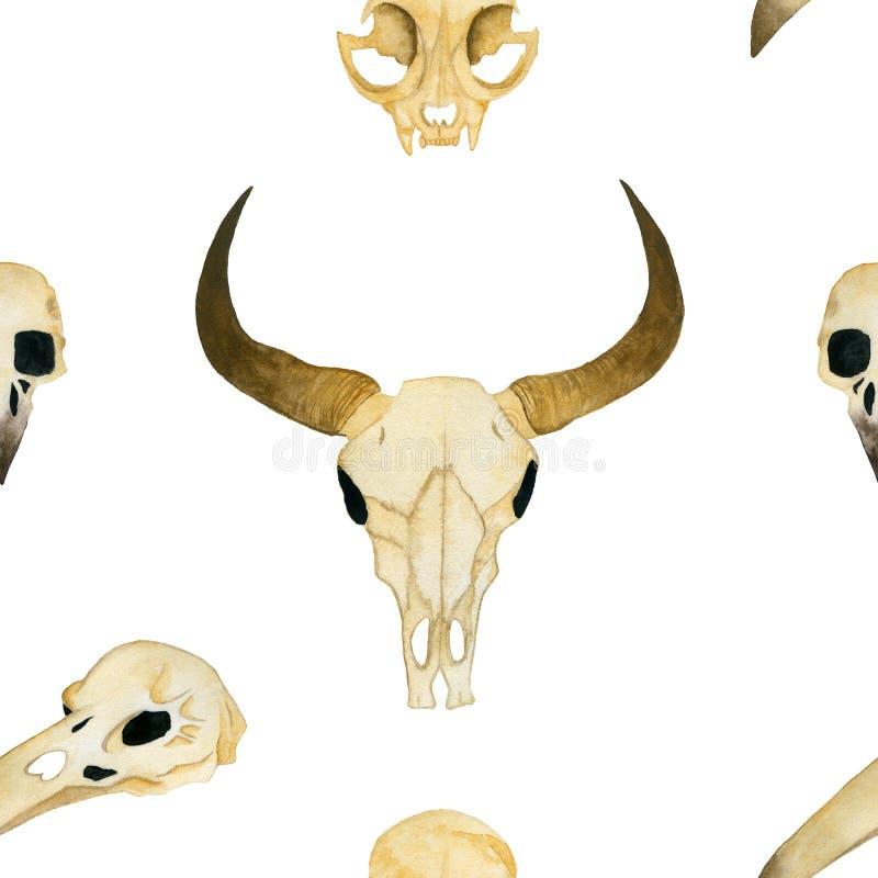 S?ml?s vattenf?rgillustration Skallen av en tjur, skallen av en katt, skallen av en galande stock illustrationer
