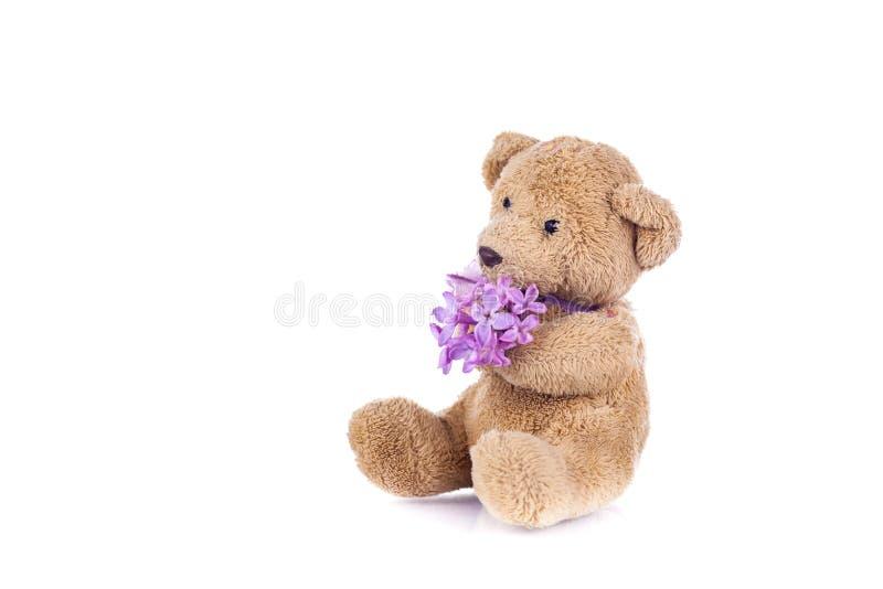 s?odkie teddy bear obraz stock