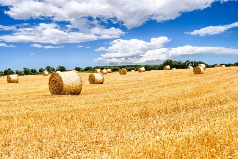 Download Słoma Bele W Irlandzkiej Wsi Obraz Stock - Obraz złożonej z wieś, zbierający: 28958541