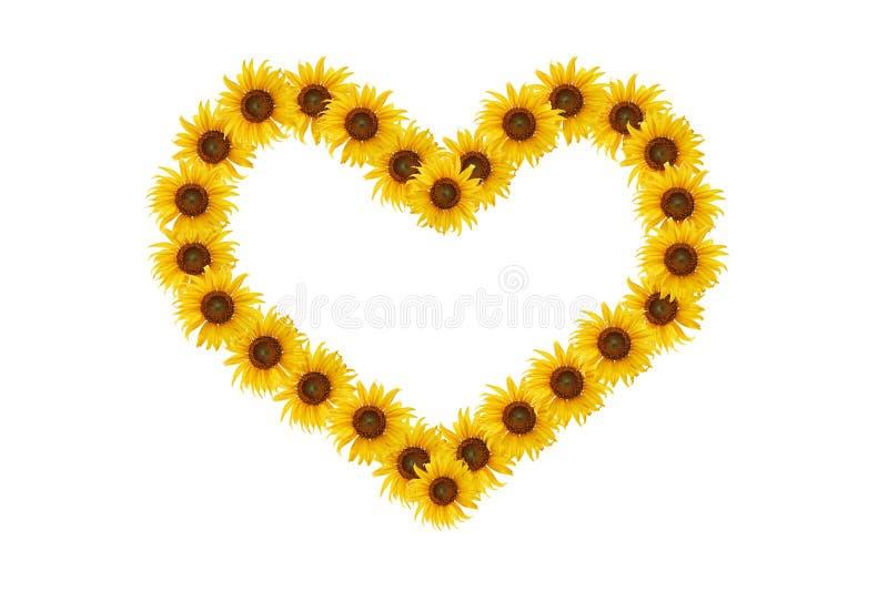 Download Słonecznik serce. zdjęcie stock. Obraz złożonej z natura - 28967130