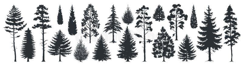 S?rja tr?dkonturer Vintergröna svarta former för för skoggranar och granar, lösa naturträdmallar Vektorskogsmark stock illustrationer