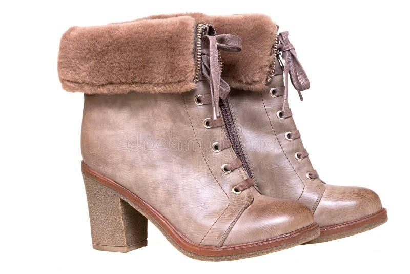 s shoes kvinnor Bruna vinterkängor på vit bakgrund arkivbilder