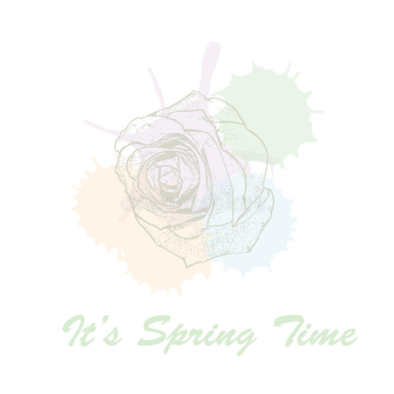 It`s spring time hand drawn lettering typography with rose flowers and watercolors pastel blots. Vector illustration of. It`s spring time hand drawn lettering stock illustration