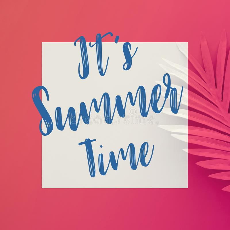 It's summer time concepts with text on pastel tropical leaves on color background stock images