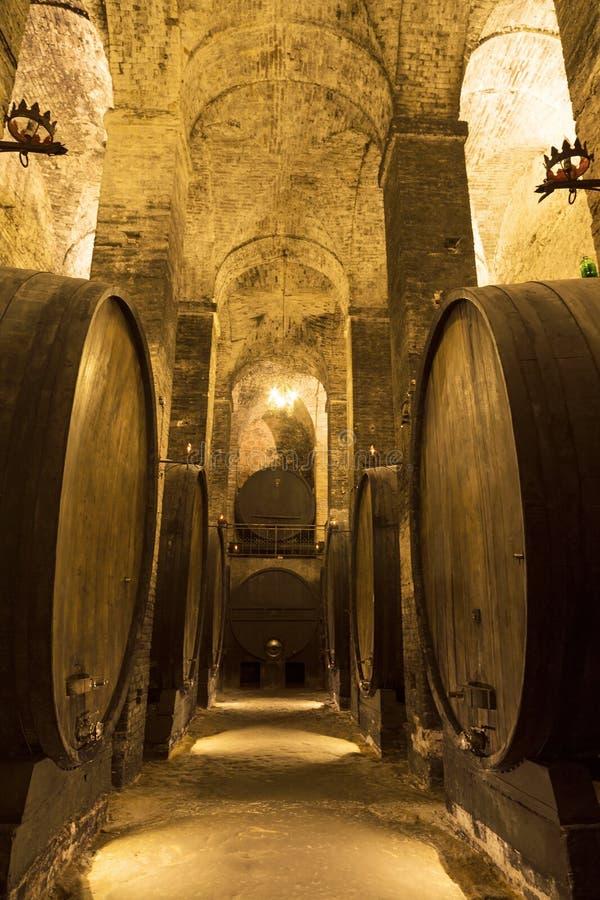 S?tano con los barriles para el almacenamiento del vino imagen de archivo