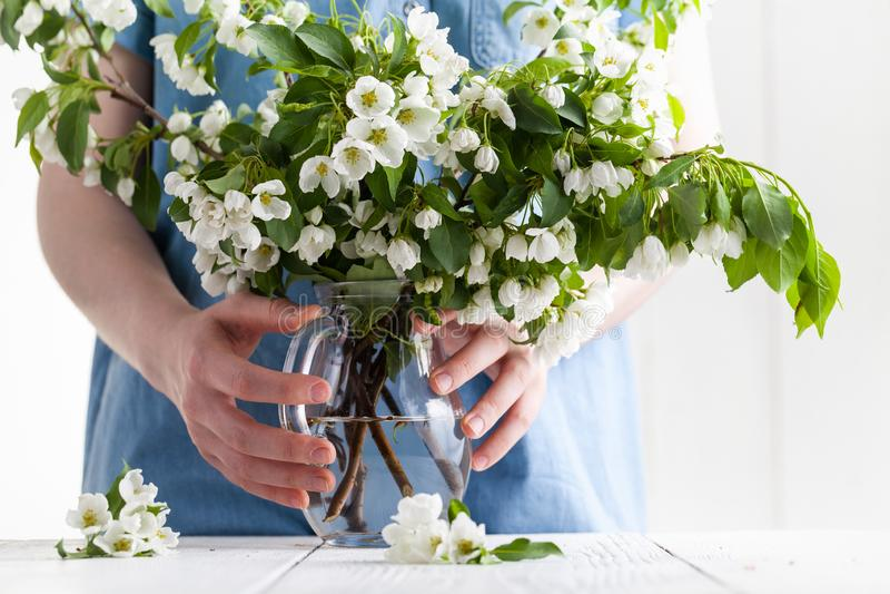 S?tta blomma fatta in i vasen royaltyfria bilder