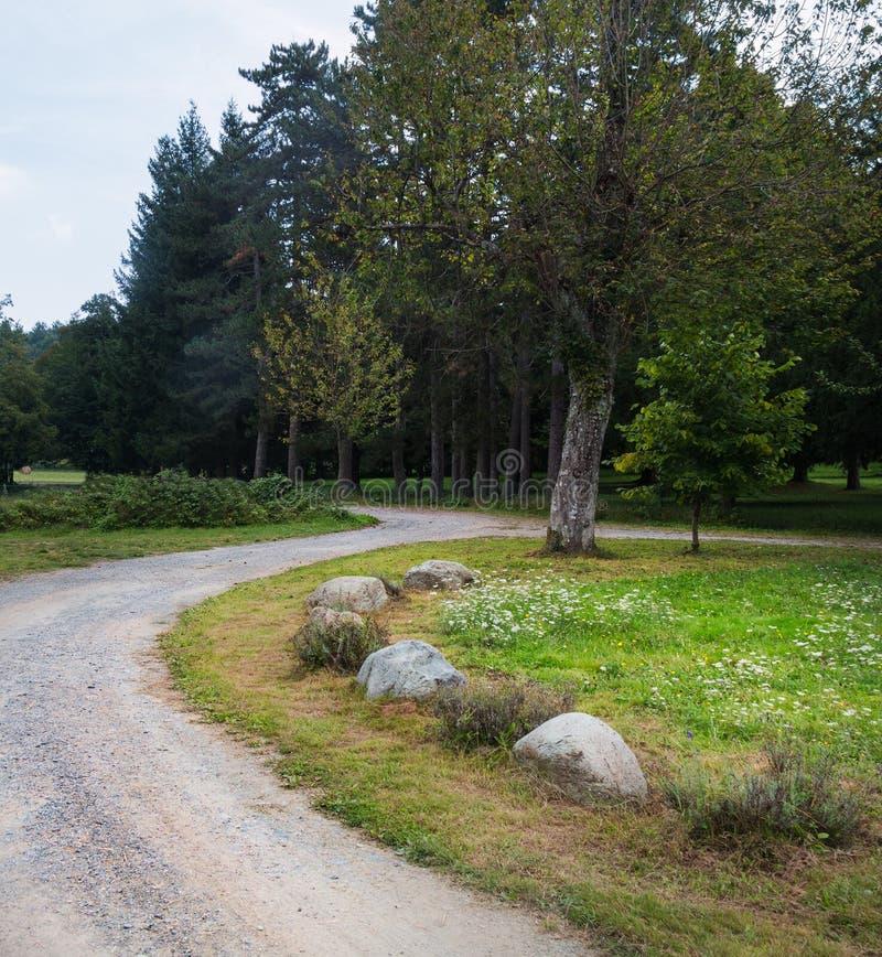 S-vormige weg stock fotografie