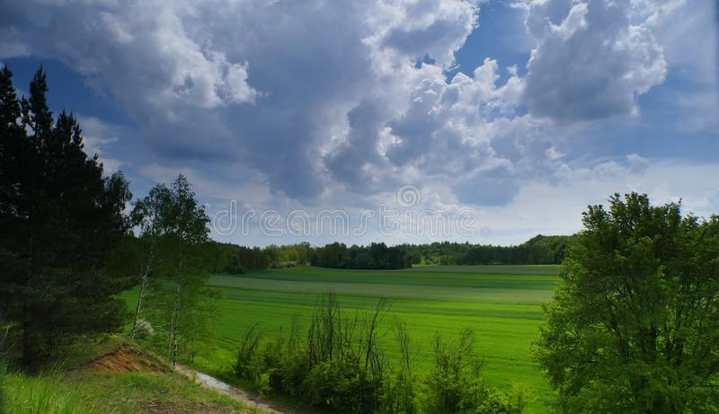 It`s a warm afternoon in the country.  royalty free stock images