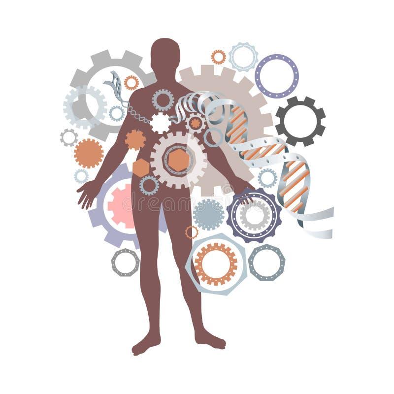 Saúde, homem, hélice do ADN imagens de stock