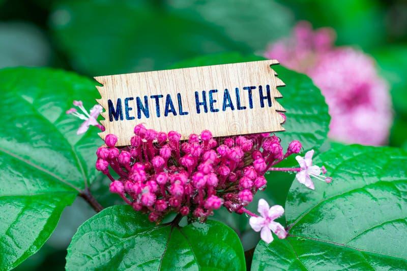 Saúde mental no cartão de madeira foto de stock royalty free