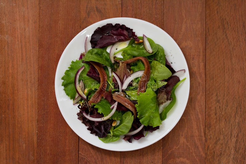 Sałatka z sardelami i cebulą na bielu talerzu zdjęcie royalty free