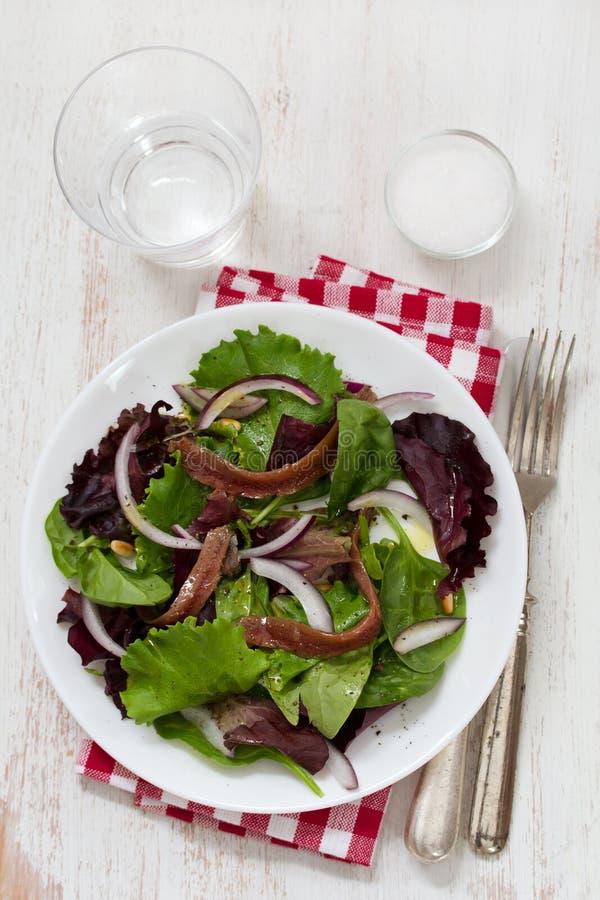 Sałatka z sardelami i cebulą na bielu talerzu fotografia stock
