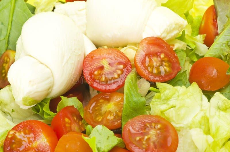 Sałatkowa mozzarella i pomidory fotografia stock