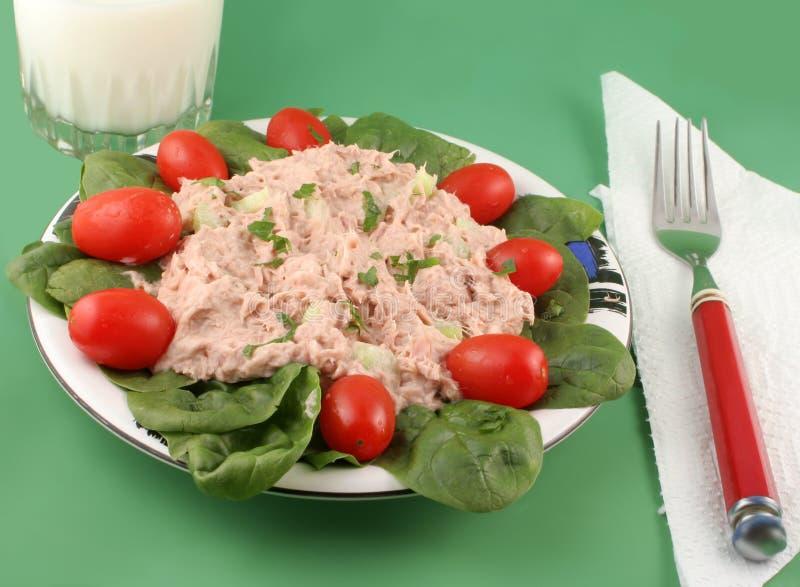 sałatkowy tuńczyka obrazy stock