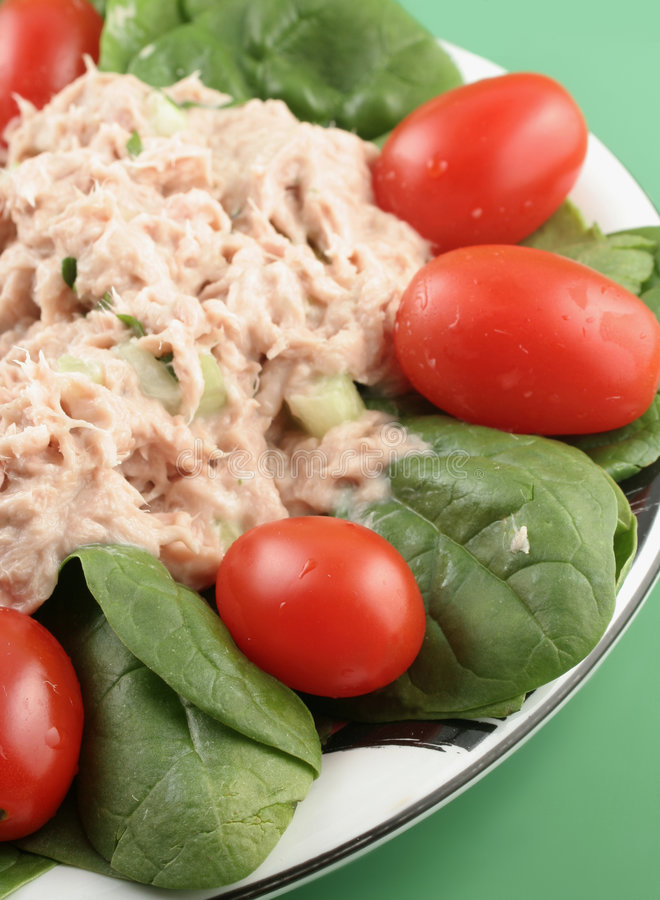 sałatkowy tuńczyka zdjęcia stock