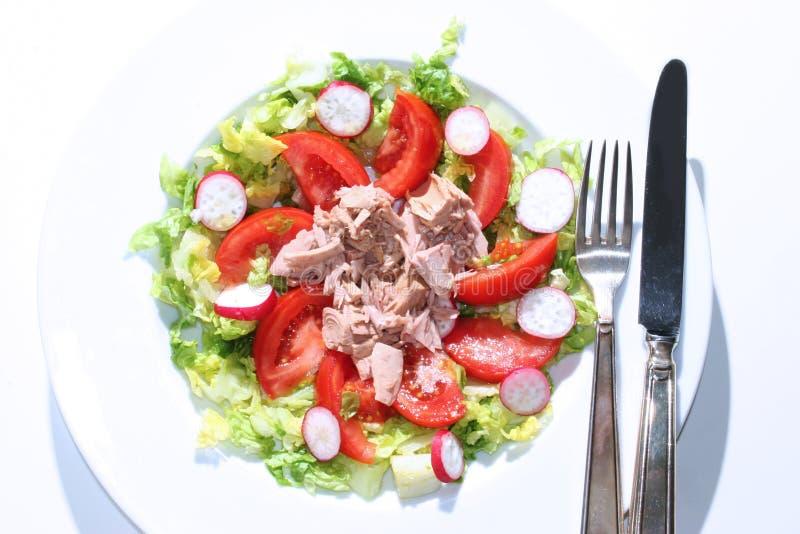Download Sałatkowy tuńczyka obraz stock. Obraz złożonej z zdrowy - 724475