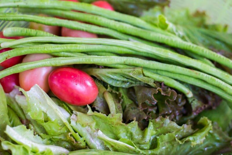 Sałatkowy warzywo w kuchni obrazy royalty free