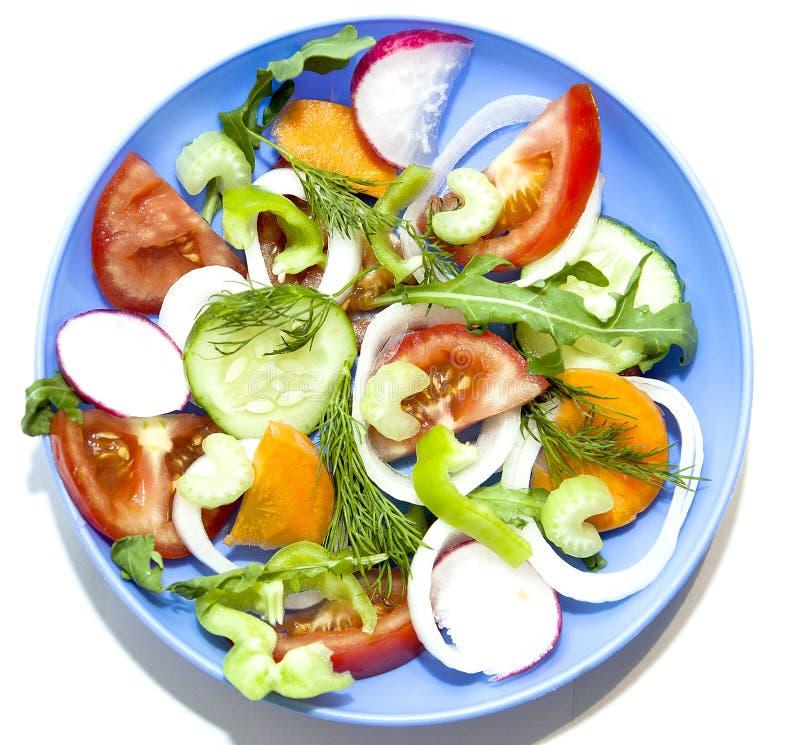 Sałatkowych pomidorowych ogórkowych rzodkwi ofoschey marchewek cebul selerowy pepp zdjęcie stock