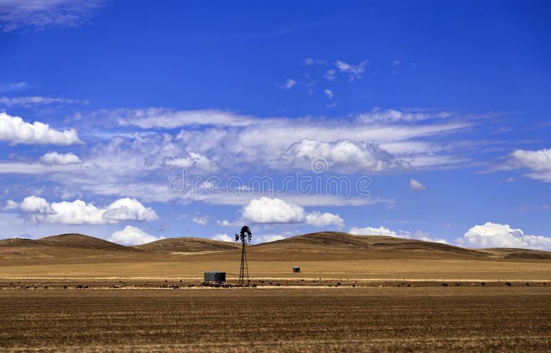SA Yellow plain windmill stock photography