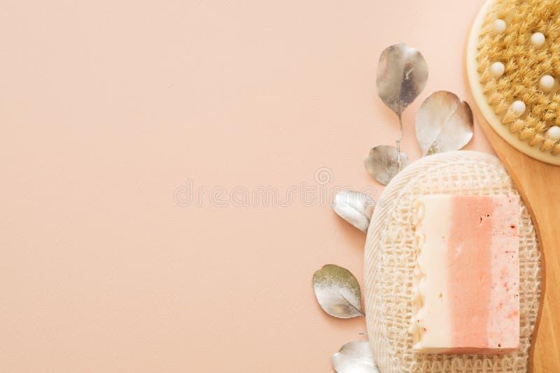 Sabão da bucha da escova do corpo da higiene dos cuidados com a pele do corpo fotografia de stock royalty free