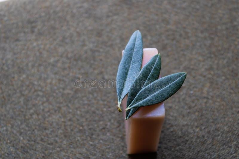 Sabão verde-oliva feito a mão com as folhas da oliveira no superior - imagem imagem de stock royalty free