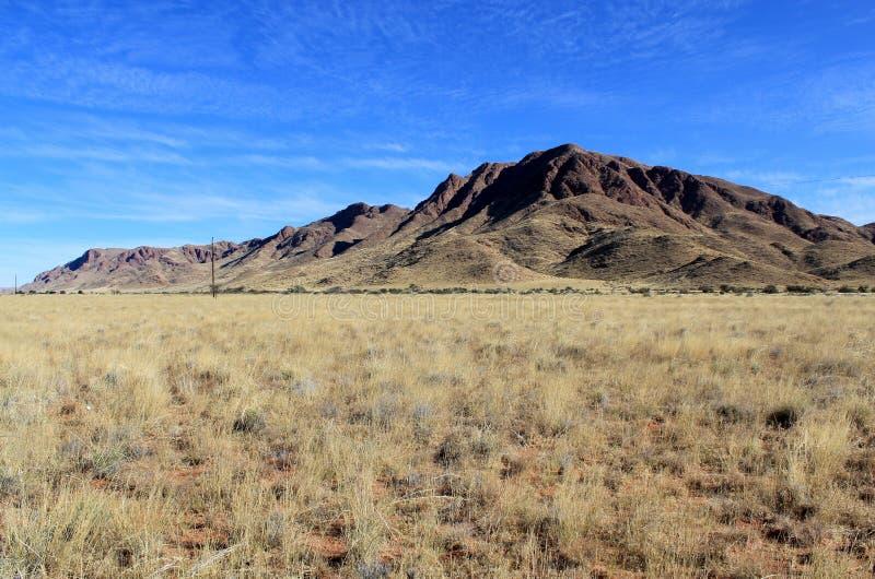 Sabana herbosa con las montañas en el fondo, parque de Namib Naukluft imagenes de archivo