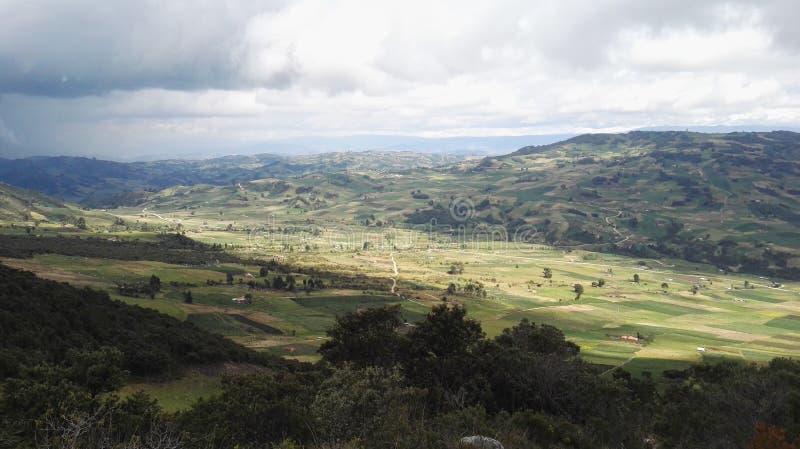 Sabanna et déboisement en Colombie photos stock