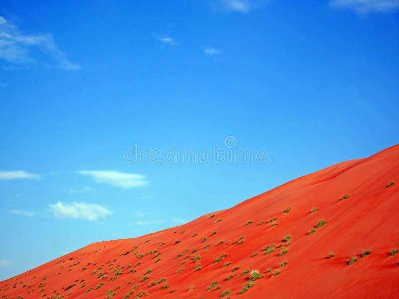 Sabbia arancio del deserto di Wahiba e del cielo blu, Oman immagine stock libera da diritti