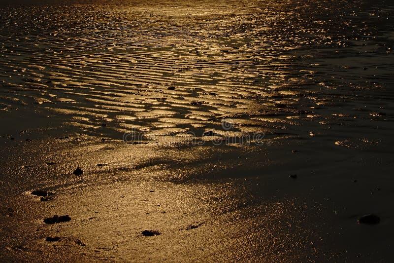 Sabbia bagnata alla luce solare di sera fotografie stock libere da diritti
