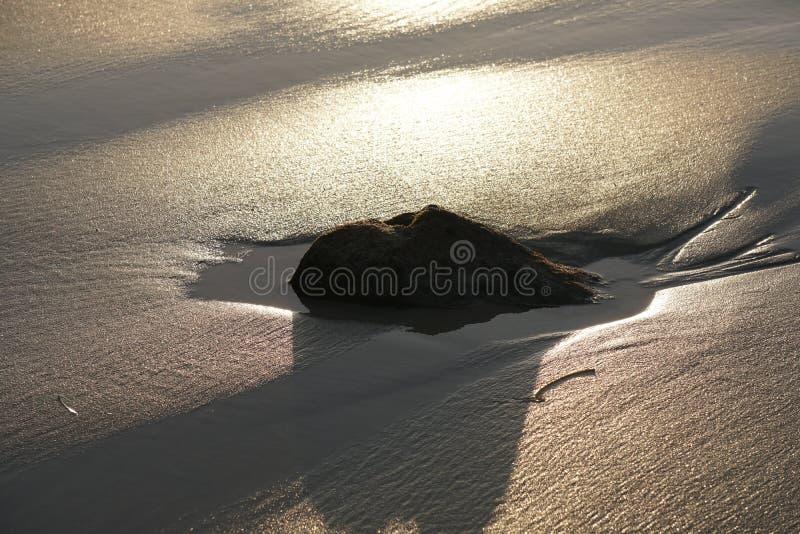 Sabbia bagnata della spiaggia nell'ambito dell'abbagliamento della luce solare luminosa immagine stock libera da diritti