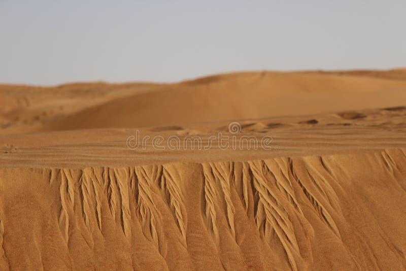 Sabbia che erode giù le dune del deserto delle sabbie di Wahiba nell'Oman fotografia stock