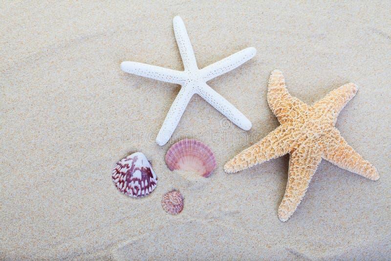 Sabbia della spiaggia