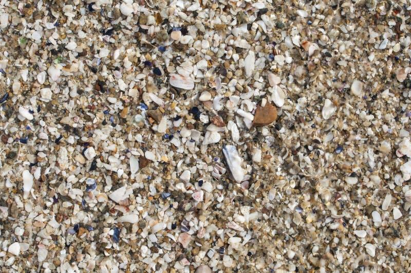 Sabbia della spiaggia fotografia stock libera da diritti